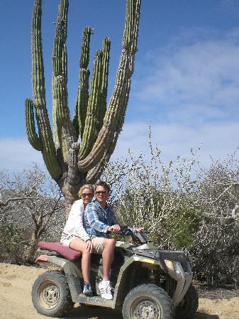 ATVs in the Desert