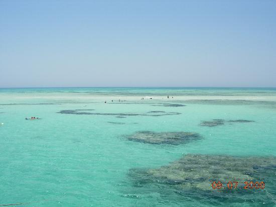 Reef Oasis Beach Resort L Isola Che Non C E
