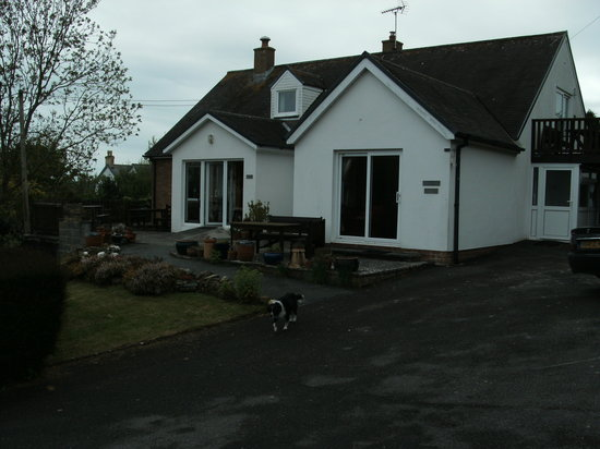 Penffynnon Cottages : mor is the one on left of photo...........its huge 3 beds equipped for disabled too