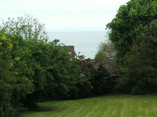 Penffynnon Cottages : thats how close to the sea it is...........just between the trees