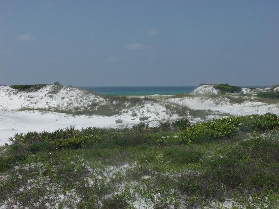 Santa Rosa Beach, FL: View from the boardwalk to the beach