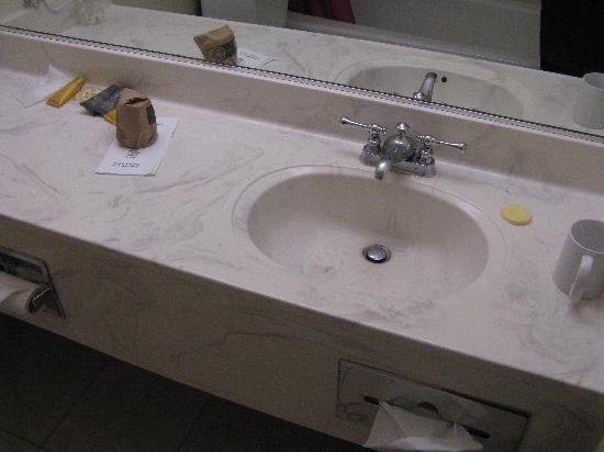 Buena Vista Motor Inn: Bathroom vanity