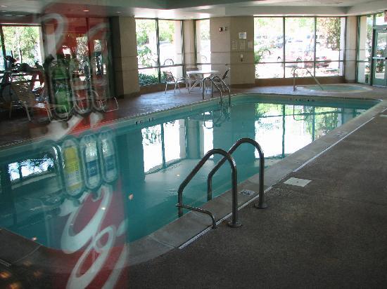 Holiday Inn Chicago Oakbrook: Indoor Pool