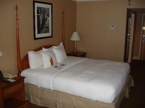 Hilton Birmingham Perimeter Park: Bed