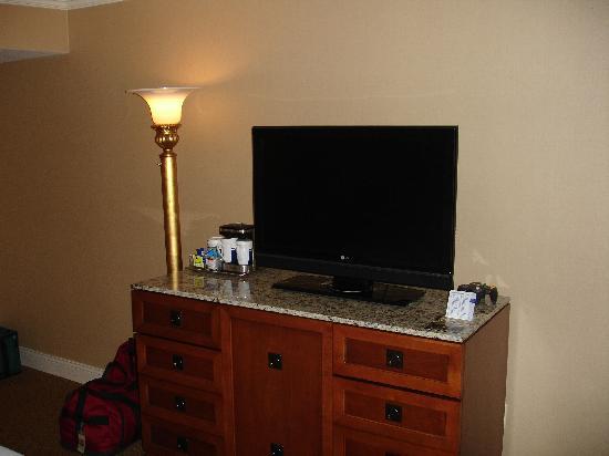 Hilton Birmingham Perimeter Park: TV