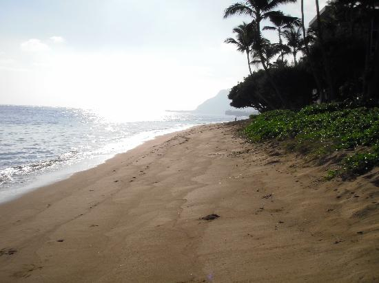 Gigi's Paradise: Beach