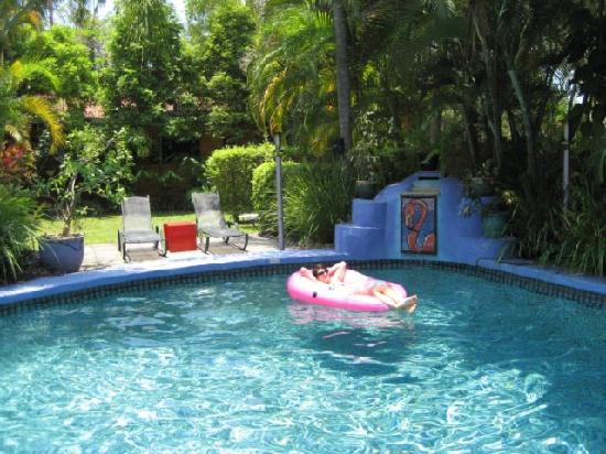 Pink Flamingo: Cool down in the pool
