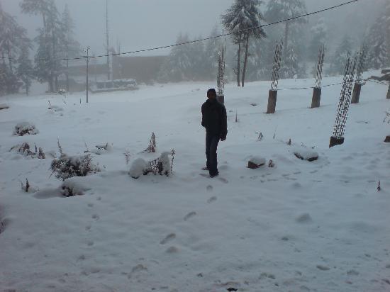 Patnitop, India: alone...