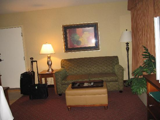 Homewood Suites by Hilton Champaign-Urbana: Living room area (sofabed)
