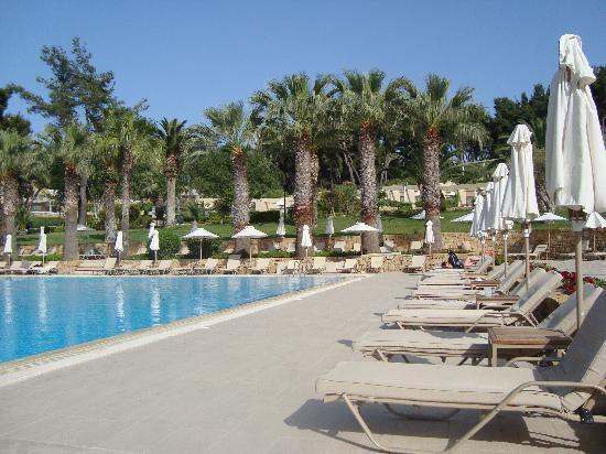 Sani Beach Club: The Pool Area