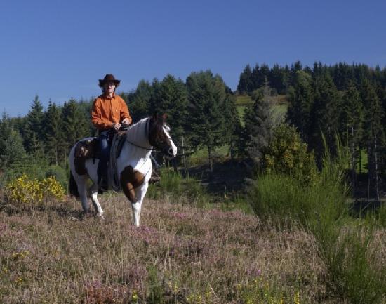 Ferme equestre de Trephy - Trephy western riding farm: Promenade à cheval dans les bruyères du Parc naturel régional de Millevaches en Limousin