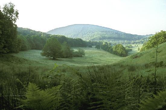 Ferme equestre de Trephy - Trephy western riding farm: La Corrèze est réputée pour sa nature et ses eaux vives. Ici, la vallée de la Ferme Equestre.