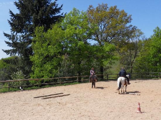 Ferme equestre de Trephy - Trephy western riding farm: Cours et stages d'Equitation Western et de pleine nature