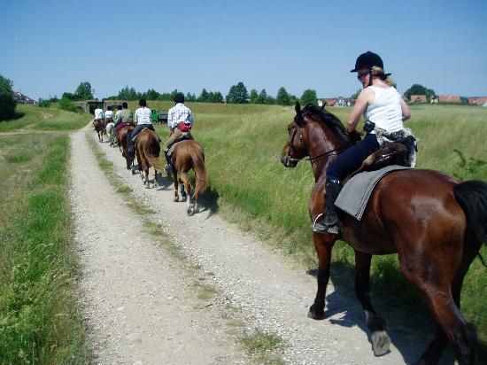 Zabie Oko : Riding in the countryside