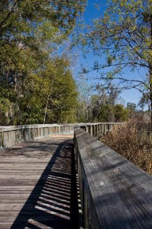 Boardwalk - Apopka end of the West Orange Trail