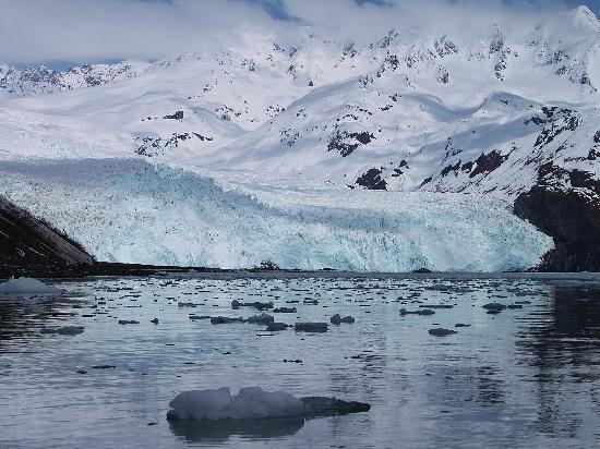 Seward, AK: Aialik Glacier