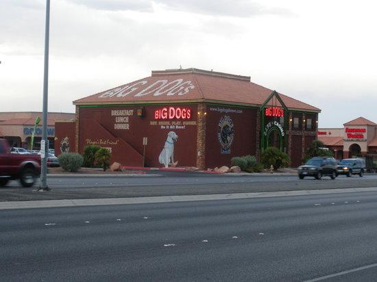 Big dogs casino elaborate street gambling game