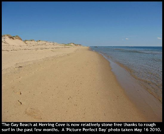Herring Cove Beach: Herring Cove's Sand is More Perfect this Year