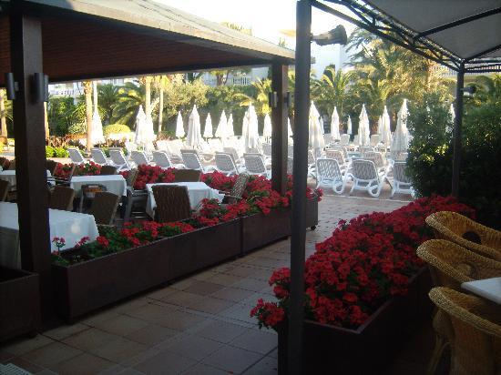 IBEROSTAR Albufera Playa: Outdoor eating area of restaurant