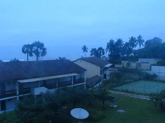 Hotel Palm Beach: Garden