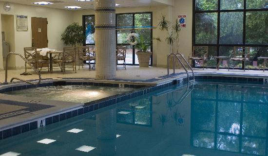 Embassy Suites by Hilton Atlanta - Galleria: Pool