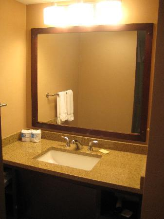 Ramada Seekonk Providence Area : Bathroom