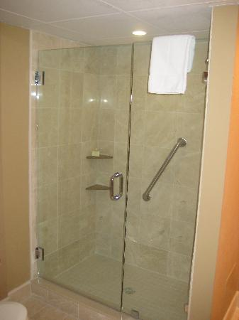 Ramada Seekonk Providence Area : Shower