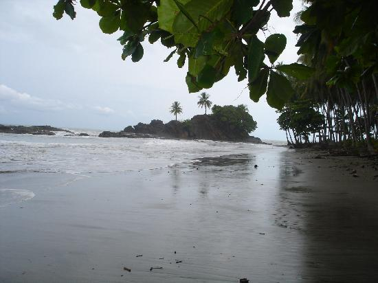 Coconut Grove Oceanfront Cottages: Dominical Beach, Costa Rica
