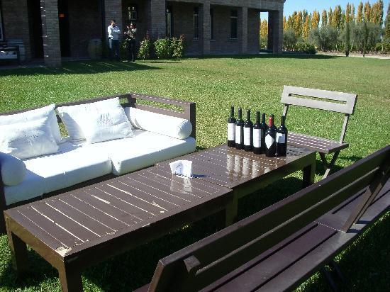 B&B Plaza Italia : Outdoor wine sampling