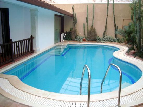 Suite Pool Picture Of Leonia Holistic Destination Hyderabad Tripadvisor