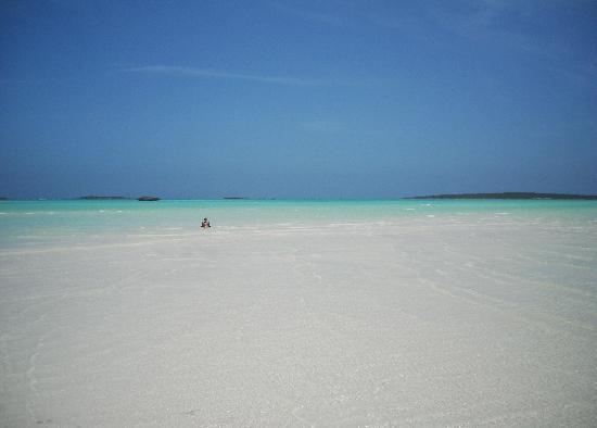 Coral Gardens: Cocoplum Beach