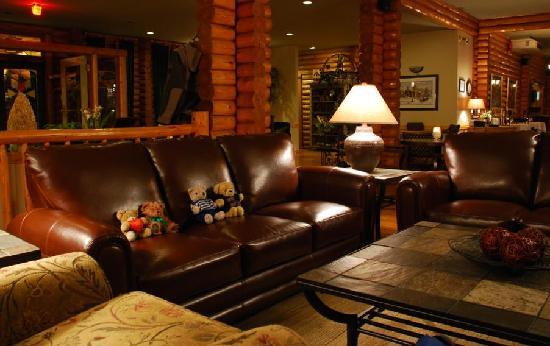 Overlander Mountain Lodge: the lovely lounge at Overlander Lodge