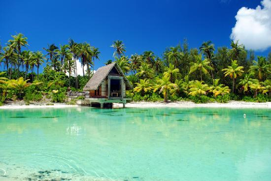 la piscina del hotel picture of intercontinental bora
