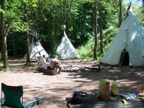 Hollybush Inn & Campsite: tipi area
