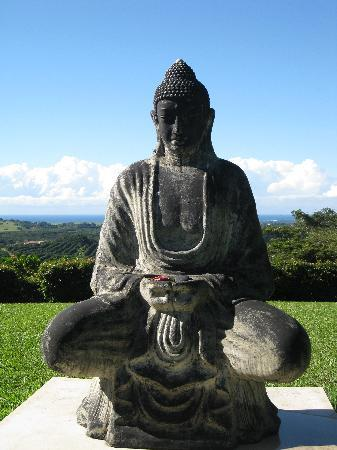 Gaia Retreat & Spa: The Buddah on top of the hill with Byron Bay behind