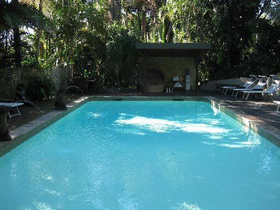 Gaia Retreat & Spa: the pool