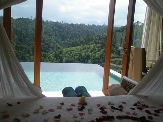Payangan, Indonesia: View from the room