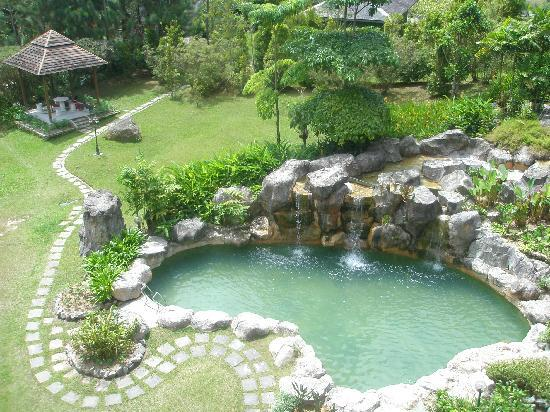 Borneo Highlands Resort: pool