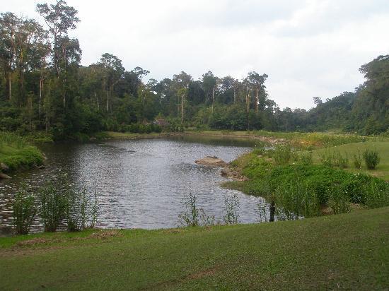 婆羅洲高原度假村照片