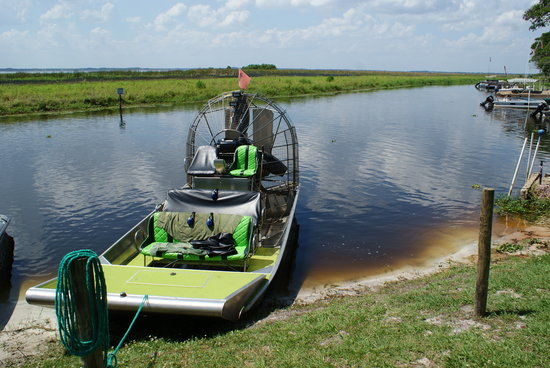 Wild Willy's Airboat Tours : The airboat reached speeds of around 70mph!