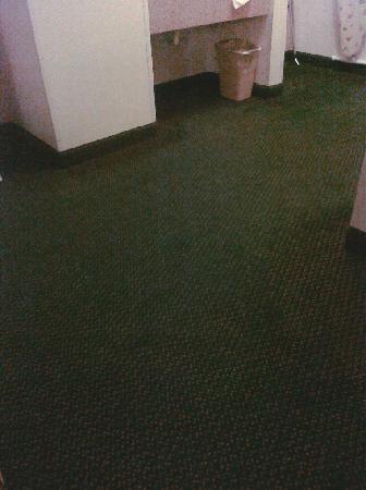 Days Inn Colby: Filthy carpet