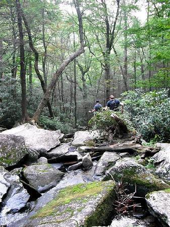 Falls Branch Falls: Walking back from the falls