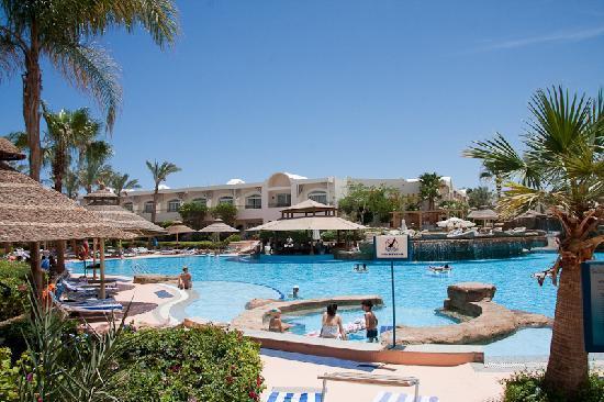 Tripadvisor Sharm El Sheikh Hotels