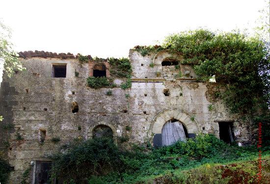 Francavilla di Sicilia, Italia: Casa Contarado vista dall'esterno