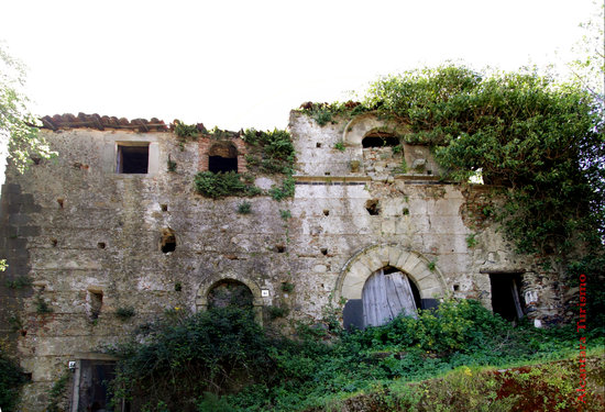 Francavilla di Sicilia, Itália: Casa Contarado vista dall'esterno