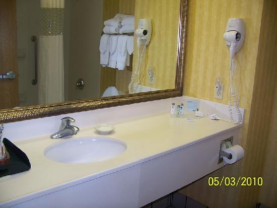 Hampton Inn Tallahassee Central: bath