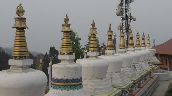 جانجتوك, الهند: Buddhist Monastery part 2
