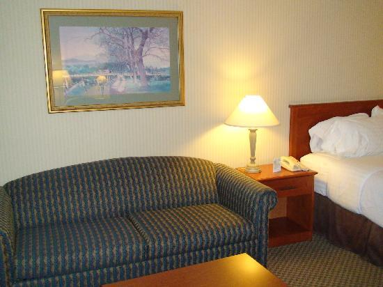 Holiday Inn Burlington Hotel & Conference Centre: queen room with pull-out sofabed