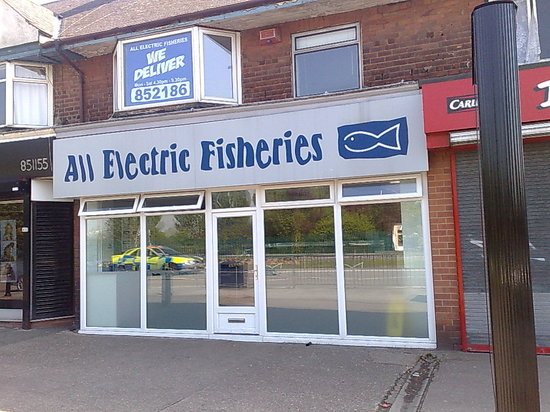 All Electric Fisheries - Beverley Road Hull