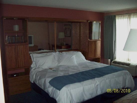 Lansing, ميتشجان: bedroom